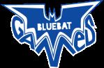 bluebat_logo